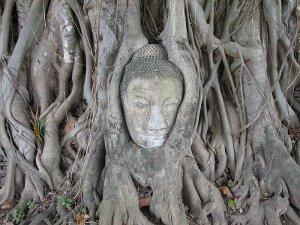 ワットマハータートにある仏像