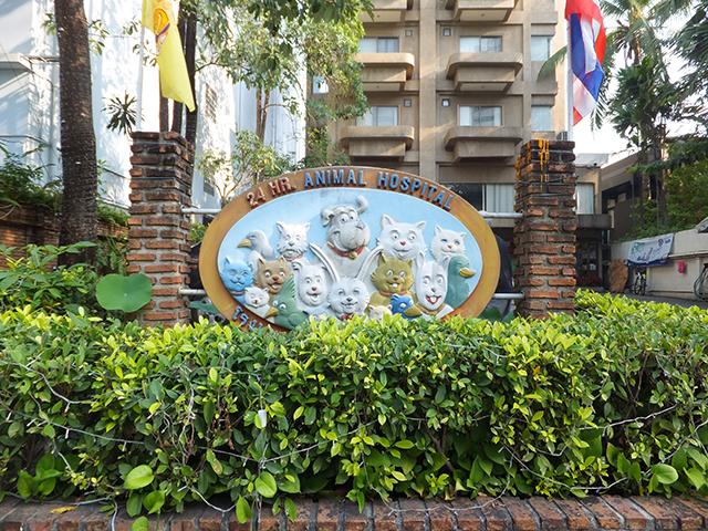 タイの動物病院。